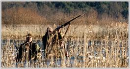 lovstvo