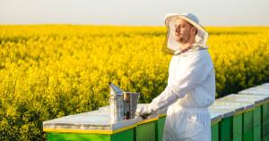 fb-beekeeping